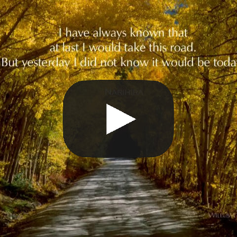 The Wisdom of the Path: A Photo Inspiration—The Video