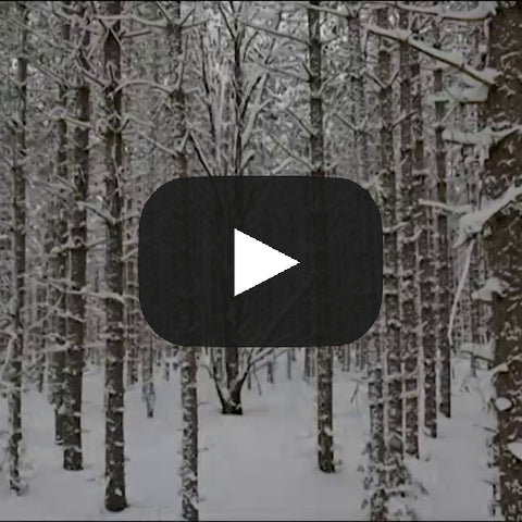 Grieving Through the Holidays: Four Videos for the Bereaved and Those Who Care About the Bereaved—The Video