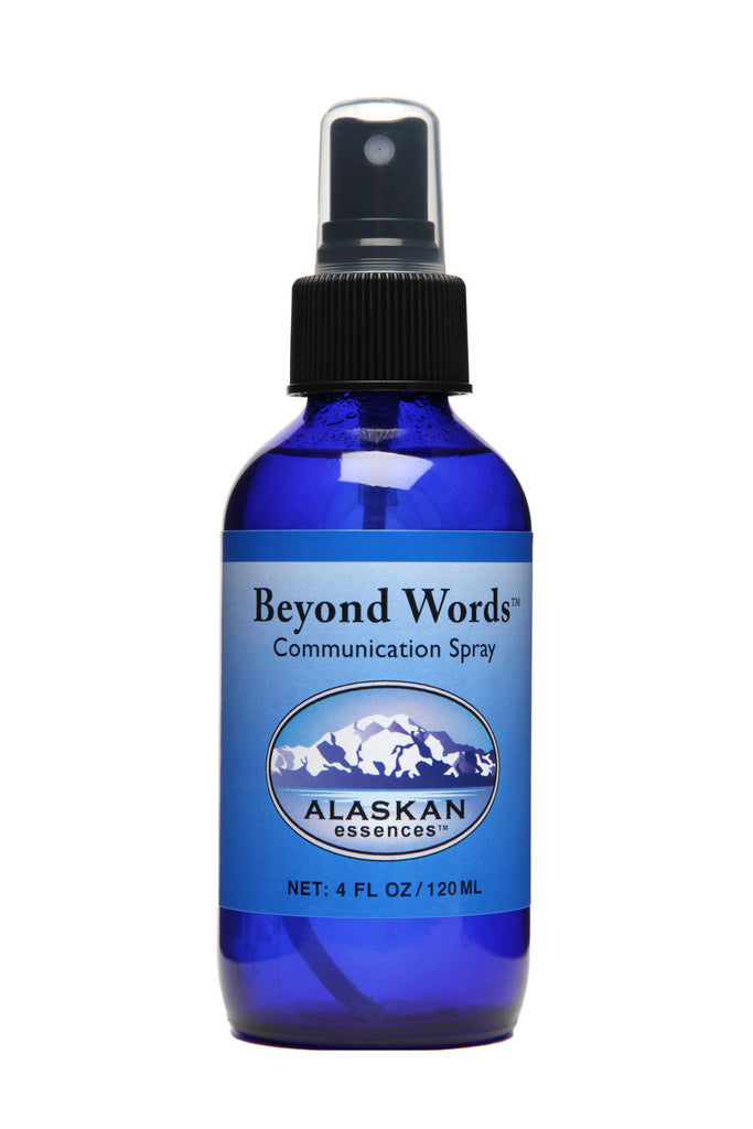 Beyond Words Spray - 4 oz
