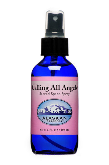Calling All Angels Spray - 4 oz