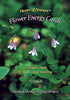 Heart of Nature - Flower Energy Cards