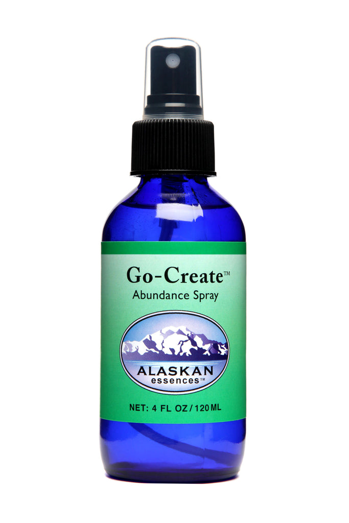 Go-Create Spray - 4 oz