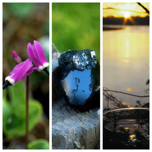 Alaskan Essences ~ a three part system of Healing