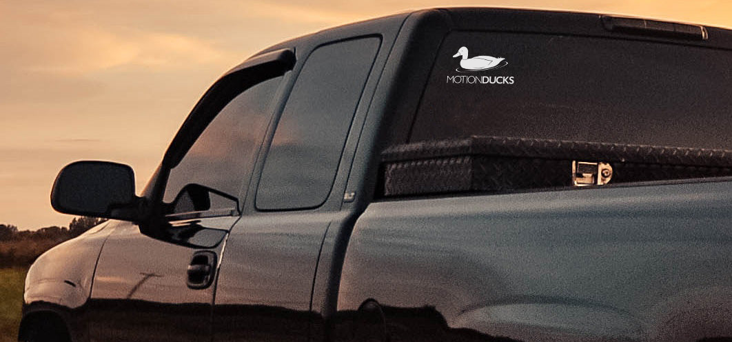 Motion Ducks Decal