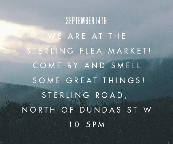 at the Sterling Flea Market Sept 14!
