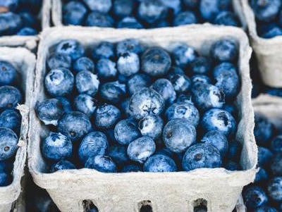 Active Ingredient | Wild Canadian Blueberries