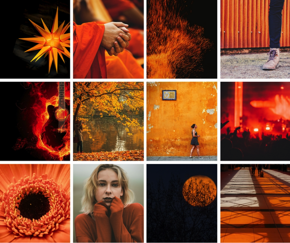 Color Psychology: The Warmth, Adventure and Independence of Orange