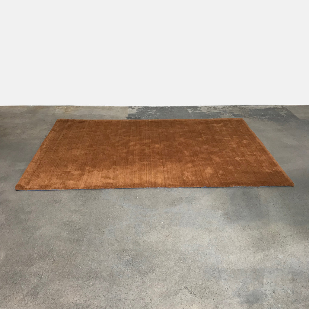 Echo Rug - Modern Resale