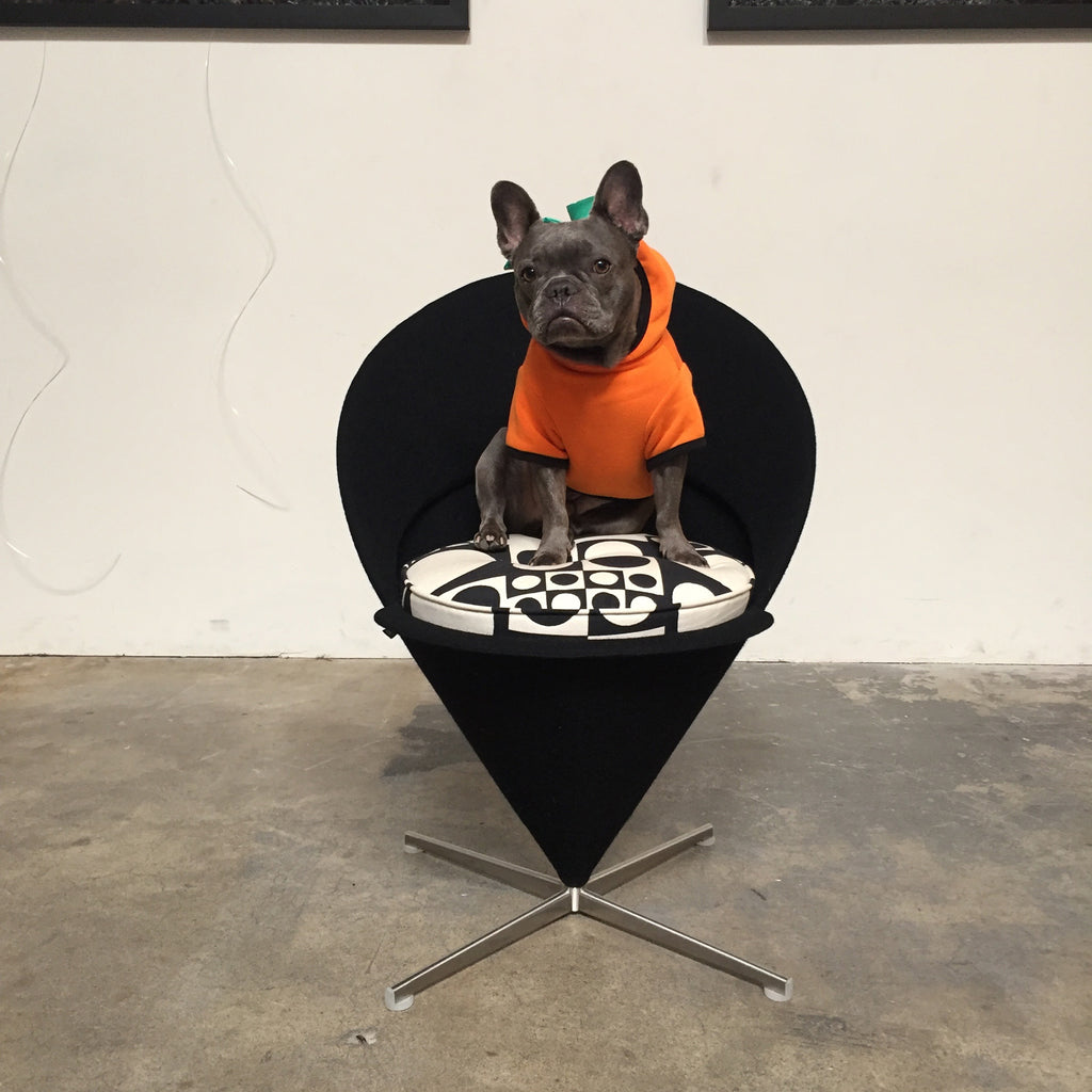 Vitra Cone Chair by Verner Panton with Chapo the frenchie