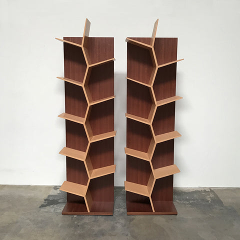 Aevum Maguey Tree Beechwood Bookcase New Discounted Designer Furniture