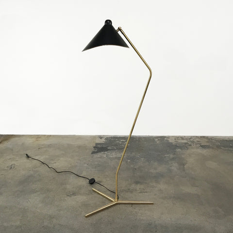 Flair Home Dino Floor Lamp with Brass base and black diffuser