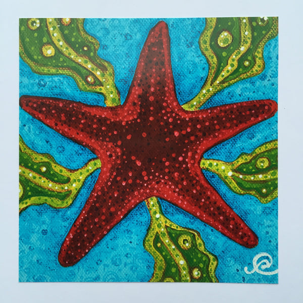 Card - Starring Starfish