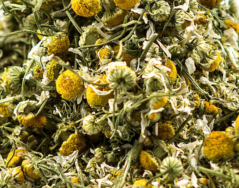 Chamomile (German), Flower