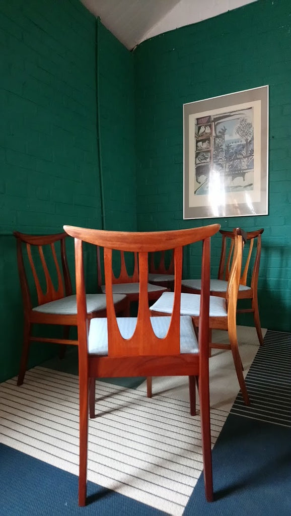 Set Of 6 G-Plan Brasilia Dining Chairs in Teak and Afrormosia