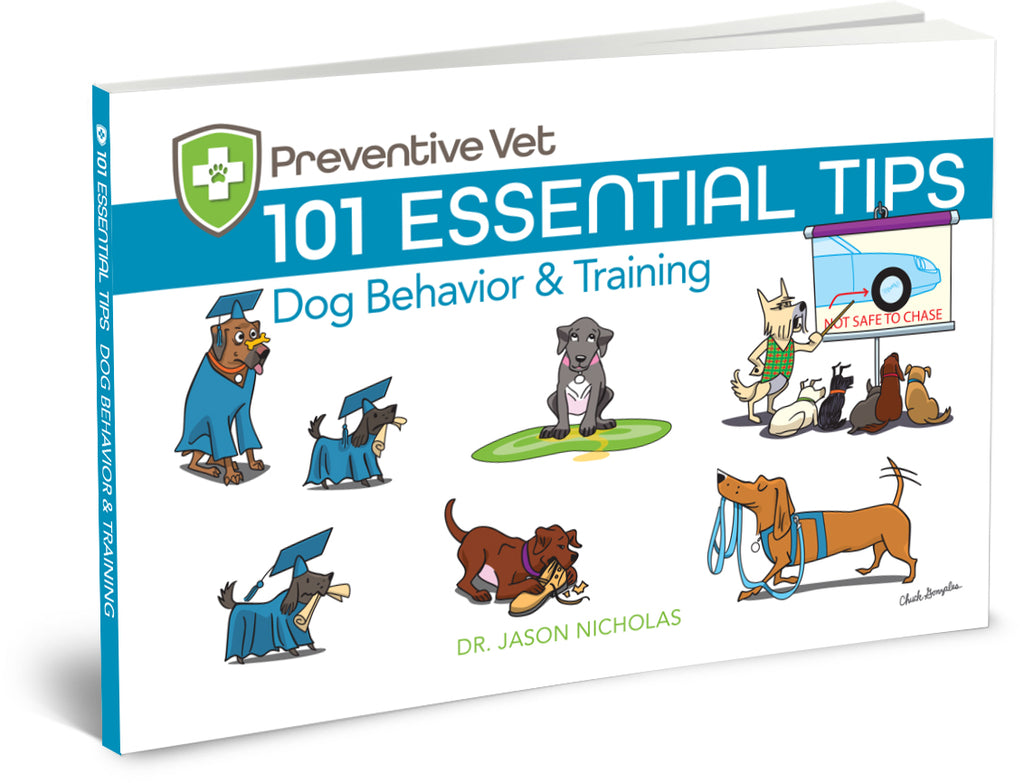 101 Essential Tips – Dog Behavior & Training (Edition 1)
