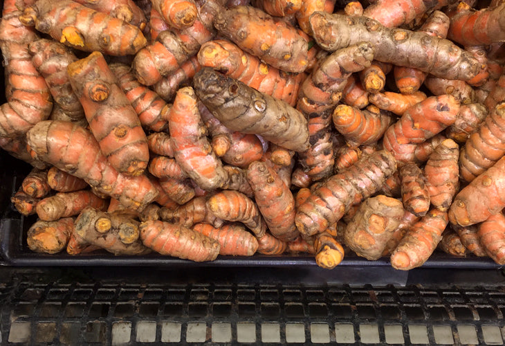 Whole turmeric looks like this, and can easily be bought in the store.  A little goes a long way.