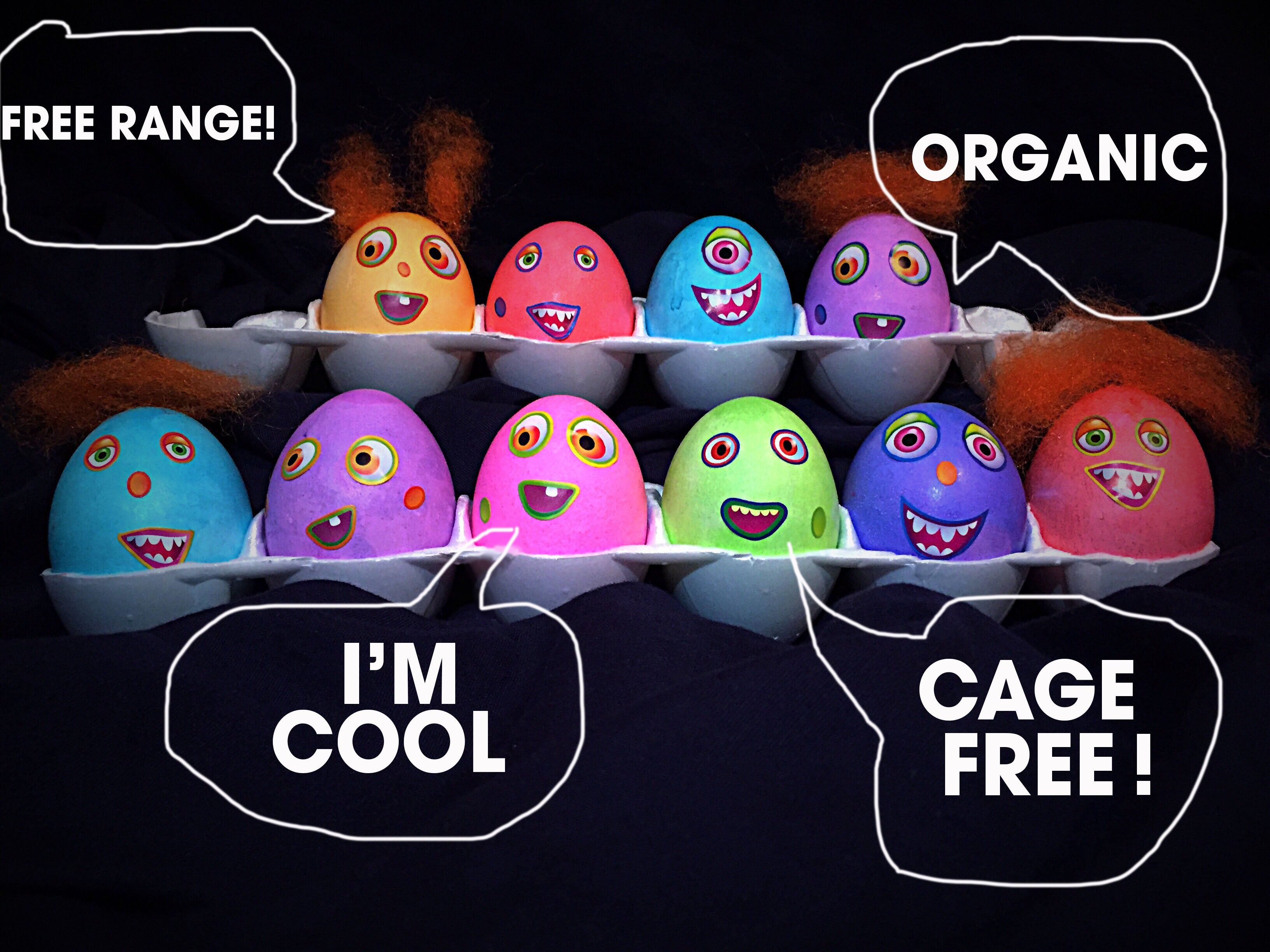 What's the difference between free range, organic, and cage free eggs?