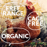 Free range, cage free, organic:  What kind of eggs should I get?