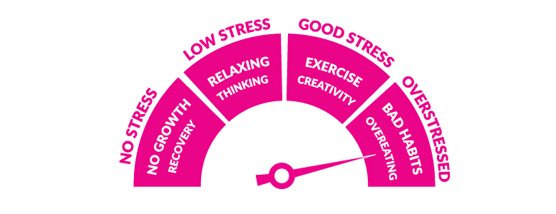 The Stress Meter