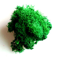 Dark green Moss Green Plants for Miniature garden designing and Resin Decor Projects- DIY Miniature Landscape