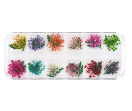 12 Colours Dry Pressed / Dried Natural assorted Flowers For Resin Crafts, Jewelry Mold Filling and Nail Art