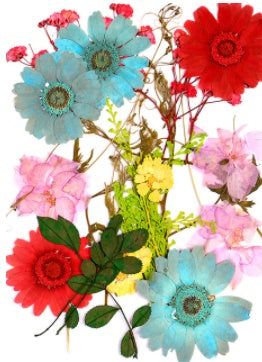 Mixed dry Pressed Flowers ,Dried Natural Flowers For Resin Crafts, Jewelry Mold Filling and Nail Art 12
