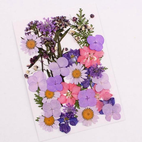 Mixed dry Pressed Flowers ,Dried Natural Flowers For Resin Crafts, Jewelry Mold Filling and Nail Art 2