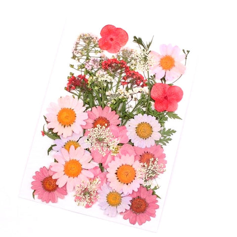 Mixed dry Pressed Flowers ,Dried Natural Flowers For Resin Crafts, Jewelry Mold Filling and Nail Art 5