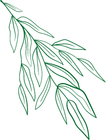 green-reef.png