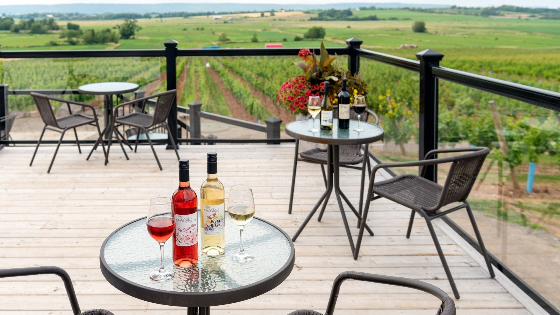 Balcony looking over the estate at 1365 Church Street Vineyard & Winery
