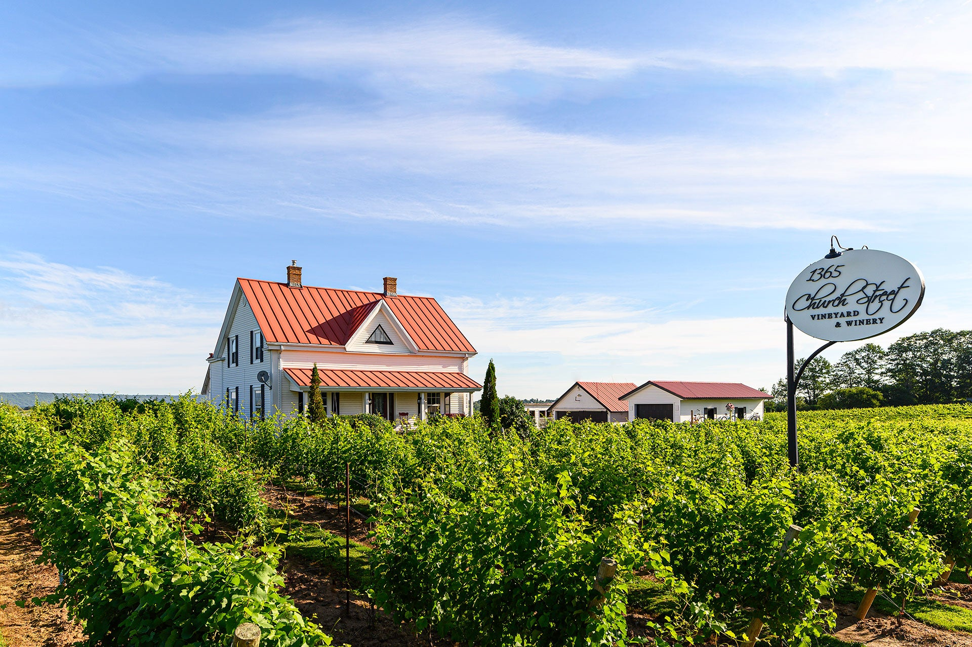 View of the house in a field of vines at 1365 Church Street Vineyard & Winery