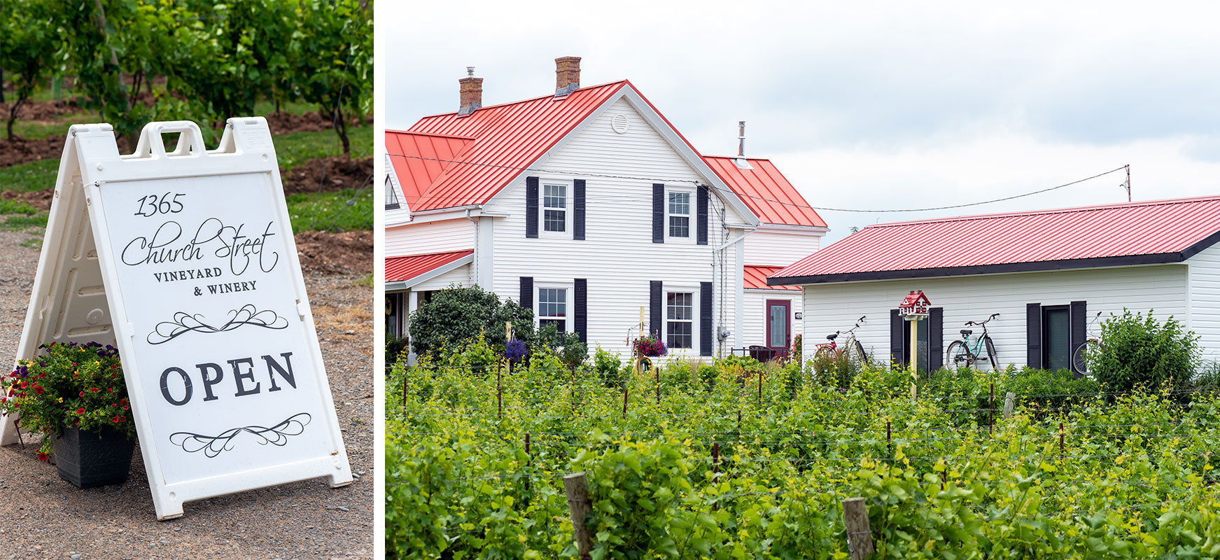 Image of open sign and back view of 1365 Church Street Vineyard