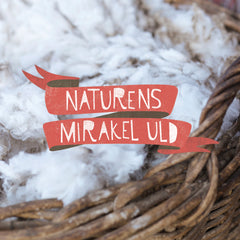 Nature's miracle wool - our natural organic merino wool for babies and children from New Zealand
