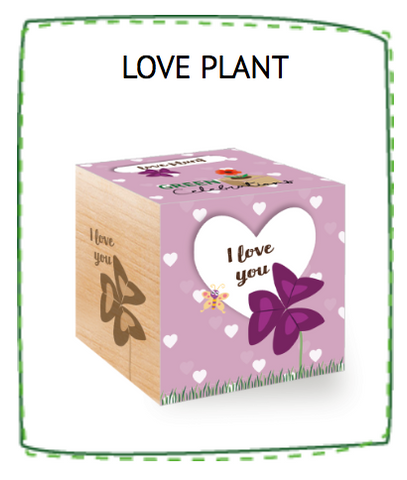 Feel Green Love Plant - I LOVE YOU