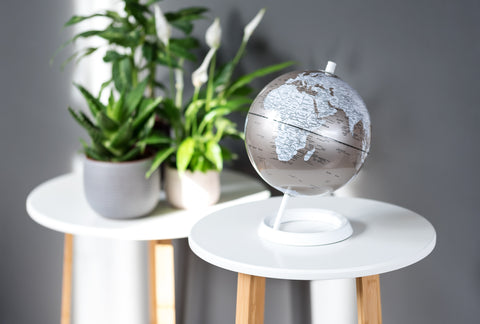 "Wild & Wolf 8"" Globe in Metallic Pewter"