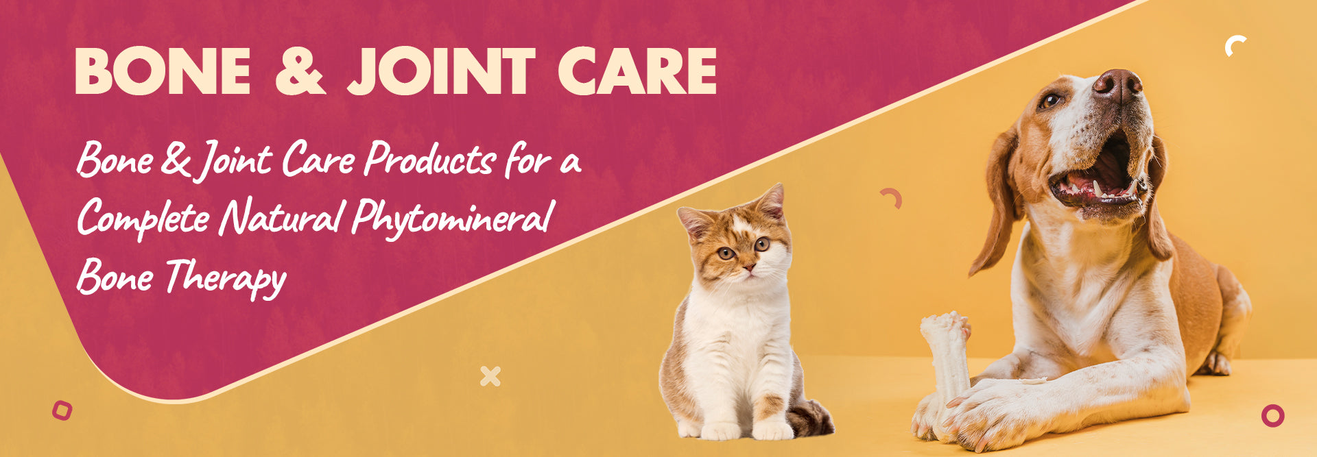 BONE_JOINT_CARE