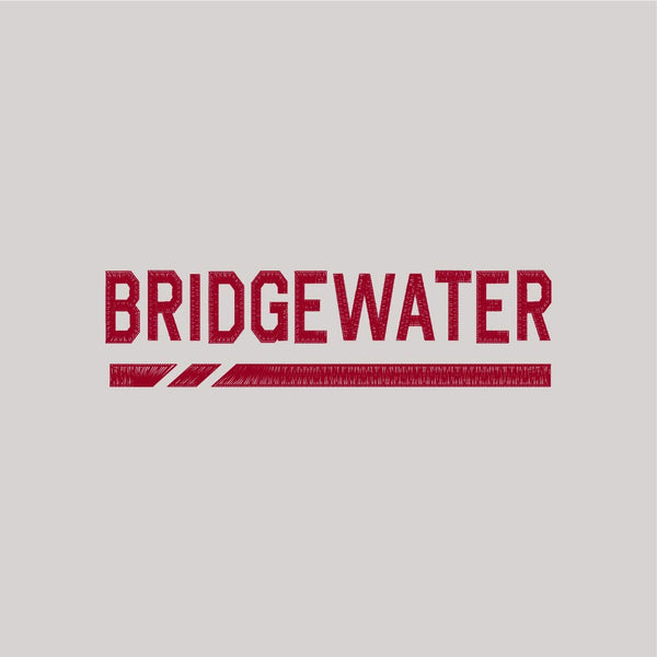 Bridgewater College Stone Under Armour Men's Hat
