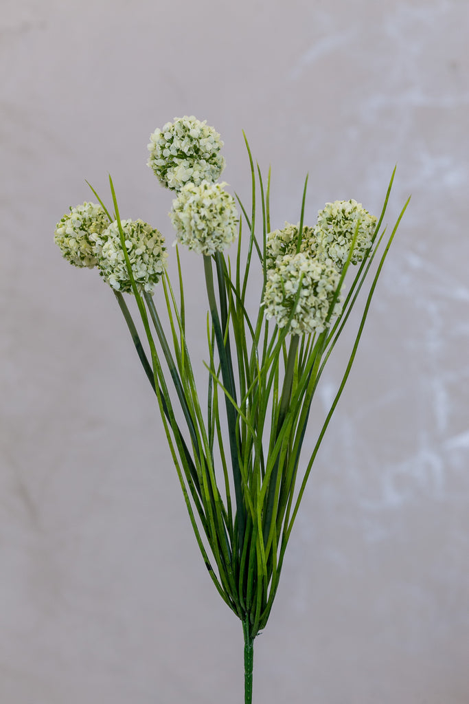 "Coco's Plantation 18.5"" Allium/Grass Bush x 7 cream - Casa Febus - Home • Design"