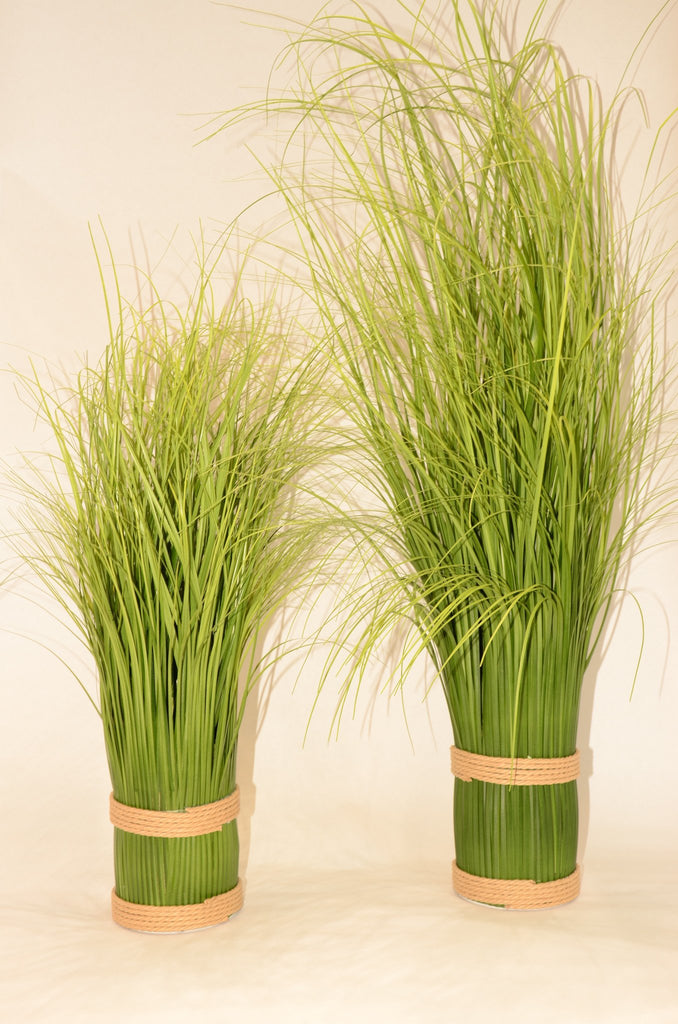 "37.5"" Zebra Grass in Pot - Casa Febus - Home • Design"