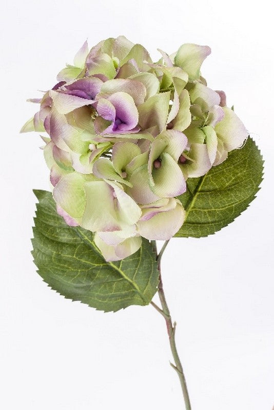 Single Hydrangea Stem - Casa Febus - Home • Design