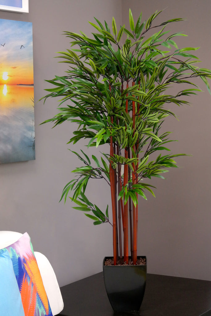 Coco's Plantation 4' Bamboo Plant in Pot - Casa Febus - Home • Design