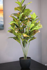 Coco's Plantation 4' Croton Leaf Floor Plant in Pot - Casa Febus - Home • Design