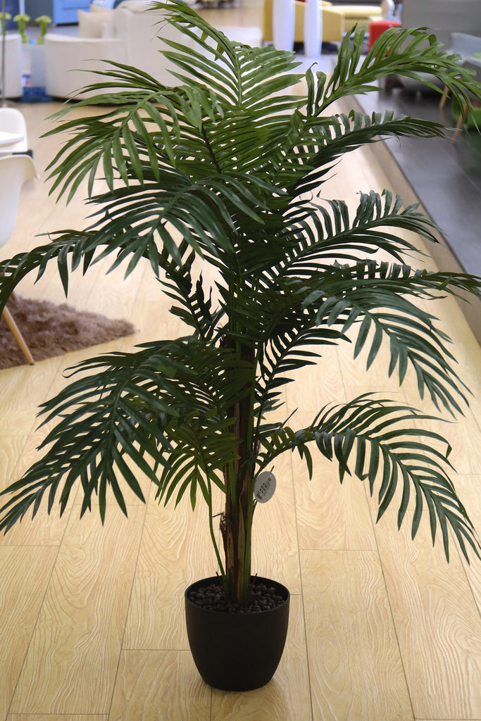 Coco's Plantation 5' Paradise Palm in Pot - Casa Febus - Home • Design