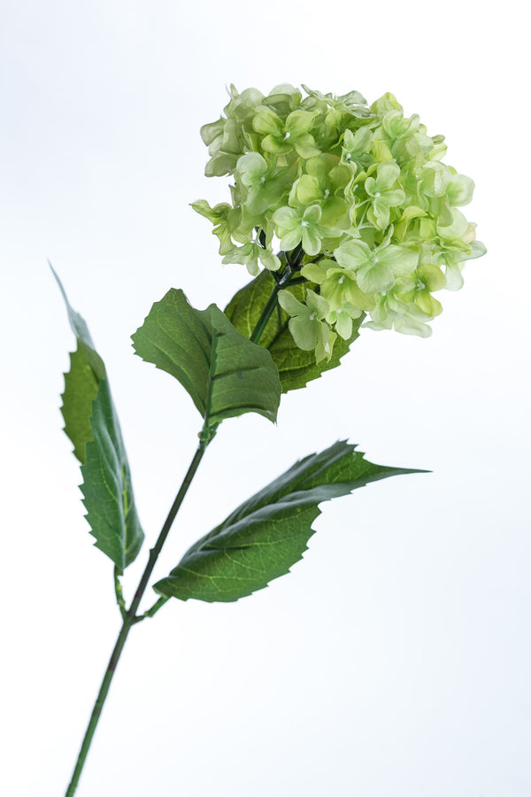 "Coco's Plantation 26.5"" Hydrangea - Green - Casa Febus - Home • Design"