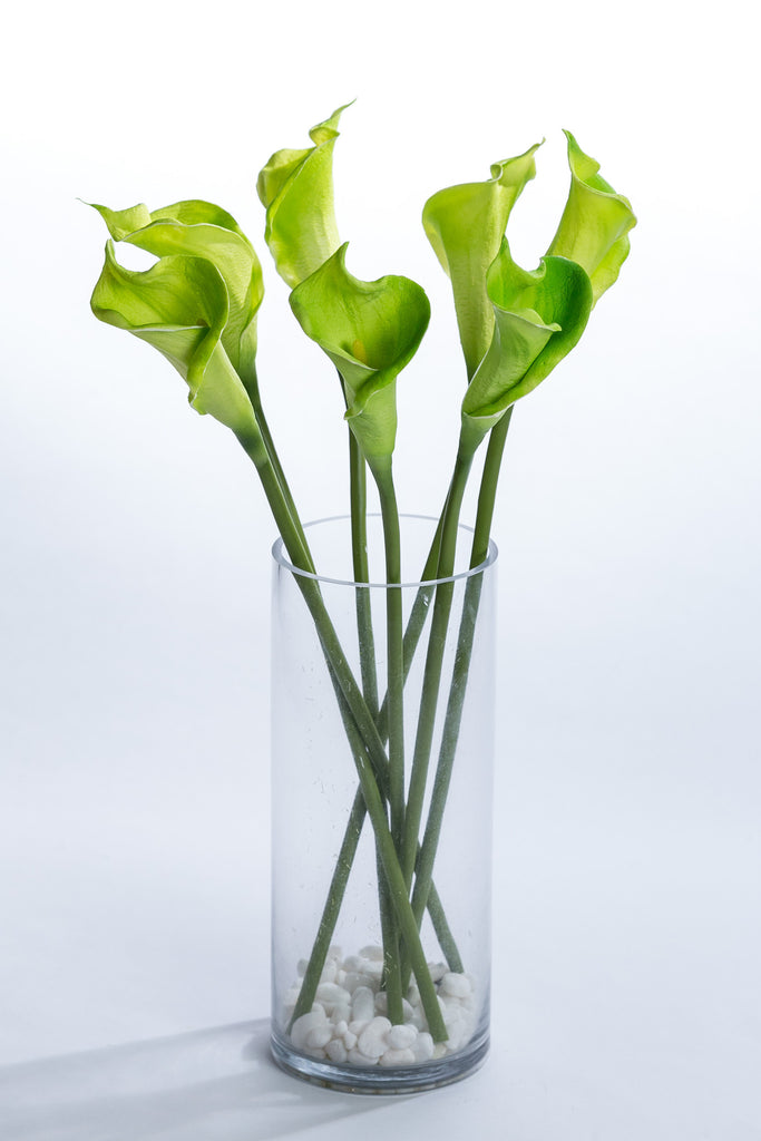 "Coco's Plantation 21"" Calla Lily Stem - Green - Casa Febus - Home • Design"