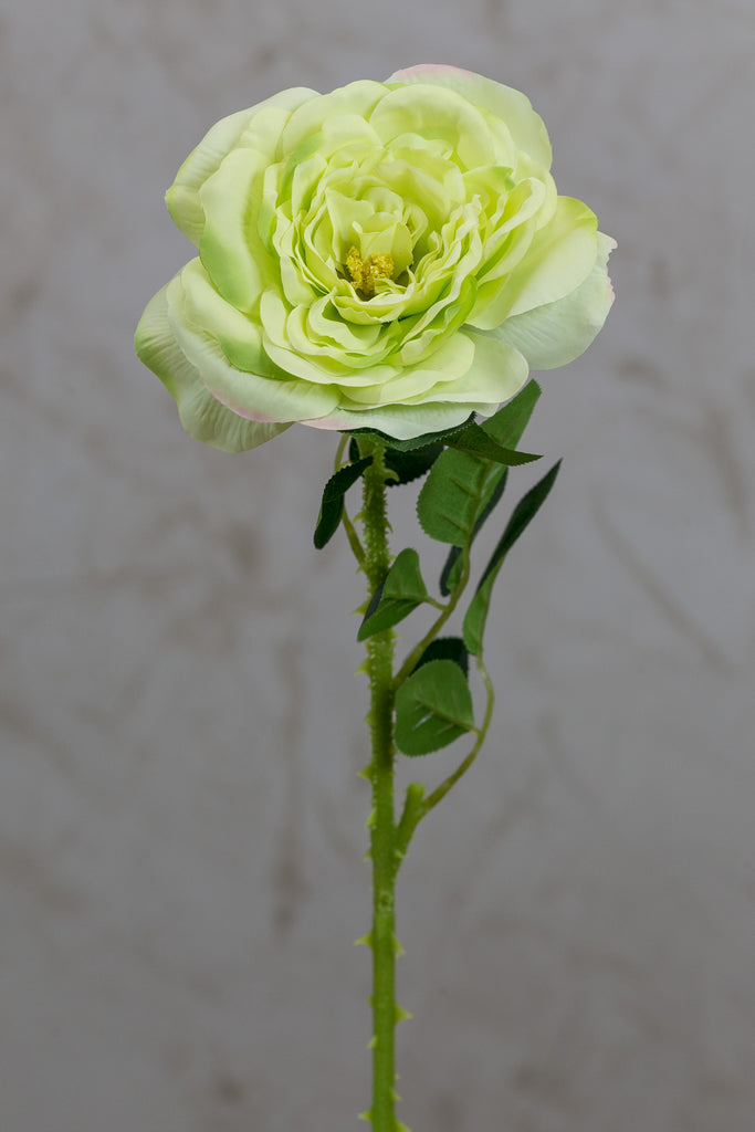 "18"" Garden Rose Stem Green - Casa Febus - Home • Design"