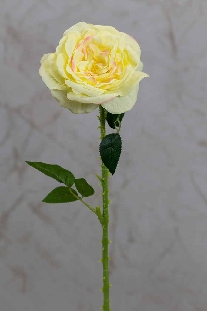 "18"" Garden Rose Stem Yellow - Casa Febus - Home • Design"