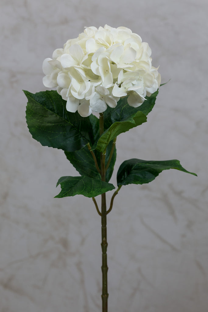 "27"" Hydrangea Stem - Cream - Casa Febus - Home • Design"