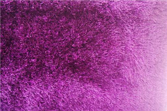Shaggy Rug - Plum 5' x 7' - Casa Febus - Home • Design