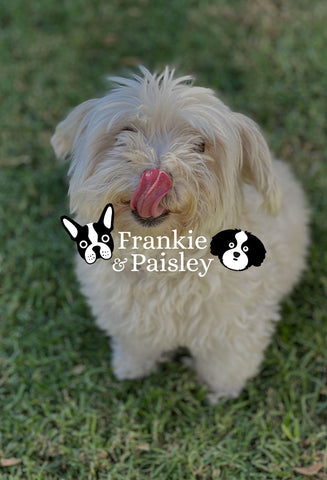 Frankie and Paisley Pet Products